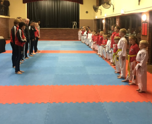 Karin Prinsloo Karate lineup